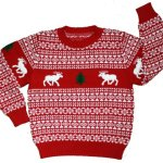 Children's Holiday Reindeer Christmas Sweater in Red